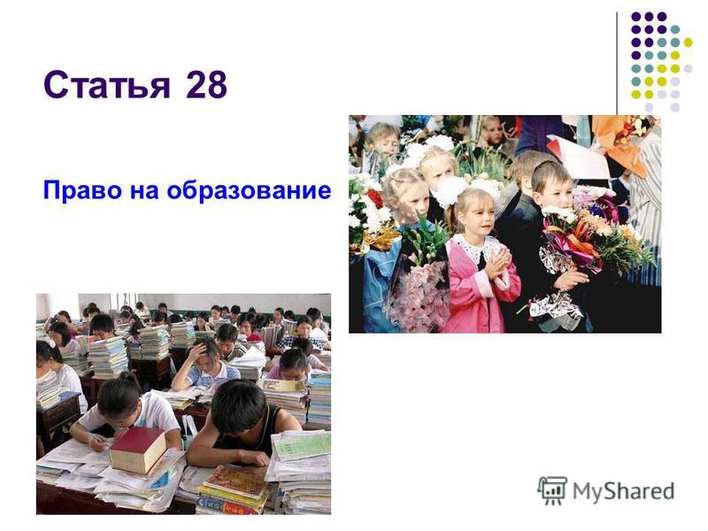 Статья 28 Право на образование