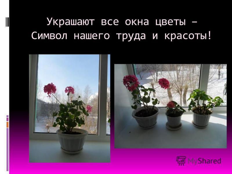Украшают все окна цветы – Символ нашего труда и красоты!