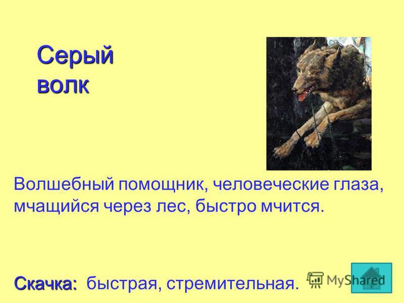 Серый волк Волшебный помощник, человеческие глаза, мчащийся через лес, быстро мчится. Скачка: Скачка: быстрая, стремительная.