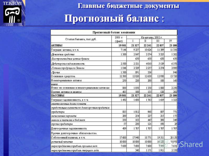 Прогнозный баланс : Главные бюджетные документы