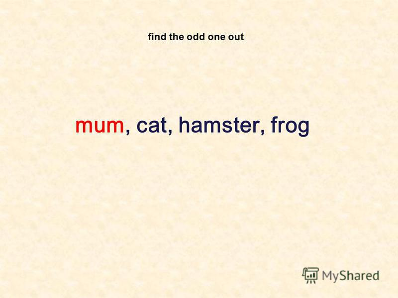find the odd one out mum, cat, hamster, frog