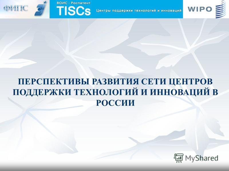 ПЕРСПЕКТИВЫ РАЗВИТИЯ СЕТИ ЦЕНТРОВ ПОДДЕРЖКИ ТЕХНОЛОГИЙ И ИННОВАЦИЙ В РОССИИ