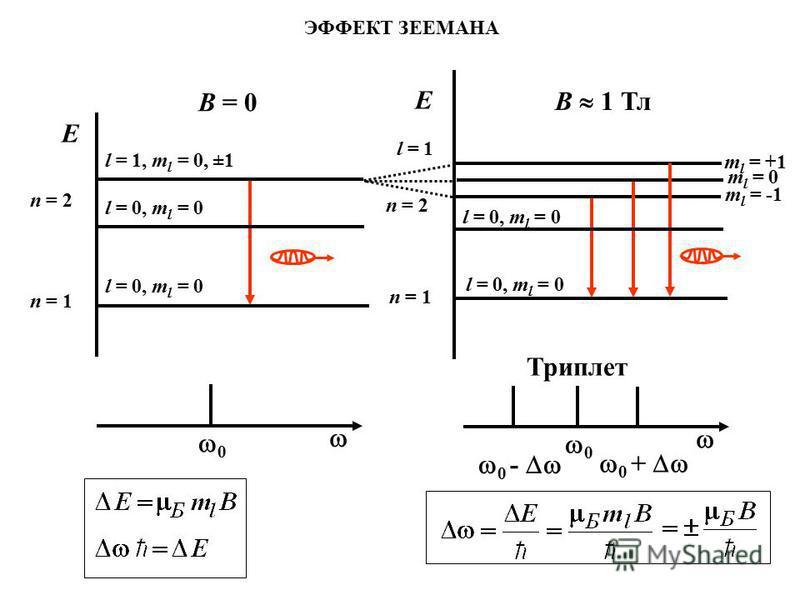 ЭФФЕКТ ЗЕЕМАНА 0 E n = 1 n = 2 l = 0, m l = 0 l = 1, m l = 0, ±1 l = 0, m l = 0 m l = +1 m l = 0 m l = -1 n = 2 n = 1 E l = 1 l = 0, m l = 0 0 0 - 0 + B = 0 B 1 Тл Триплет