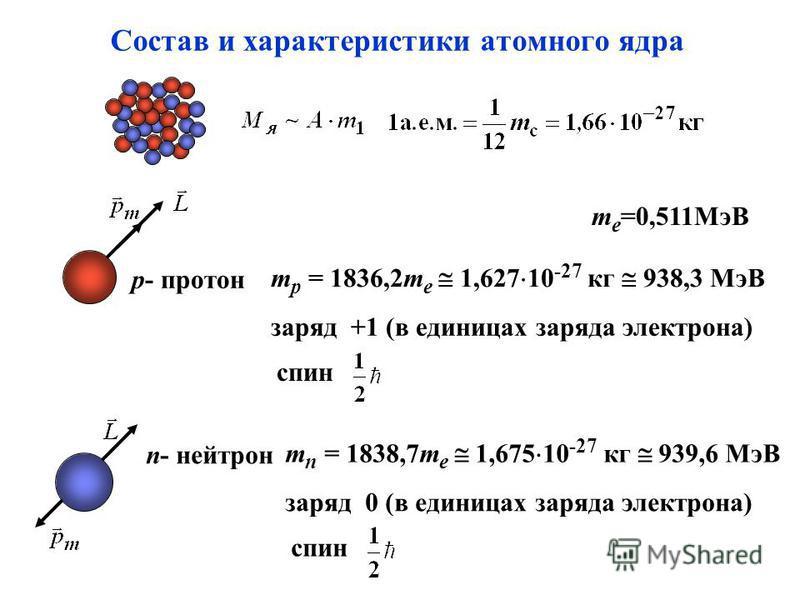 Cостав и характеристики атомного ядра p- протон m p = 1836,2m e 1,627 10 -27 кг 938,3 МэВ заряд +1 (в единицах заряда электрона) спин n- нейтрон m n = 1838,7m e 1,675 10 -27 кг 939,6 МэВ заряд 0 (в единицах заряда электрона) спин m e =0,511МэВ