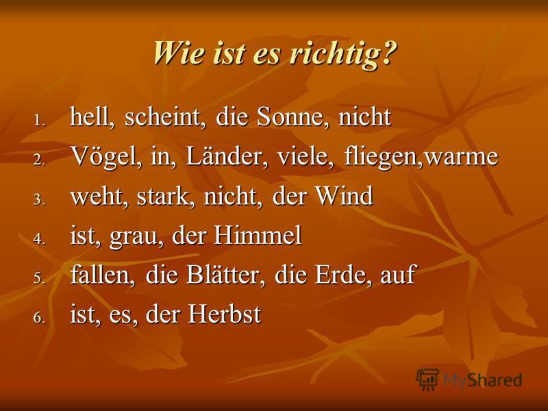 Wie ist es richtig? 1. hell, scheint, die Sonne, nicht 2. Vögel, in, Länder, viele, fliegen,warme 3. weht, stark, nicht, der Wind 4. ist, grau, der Himmel 5. fallen, die Blätter, die Erde, auf 6. ist, es, der Herbst