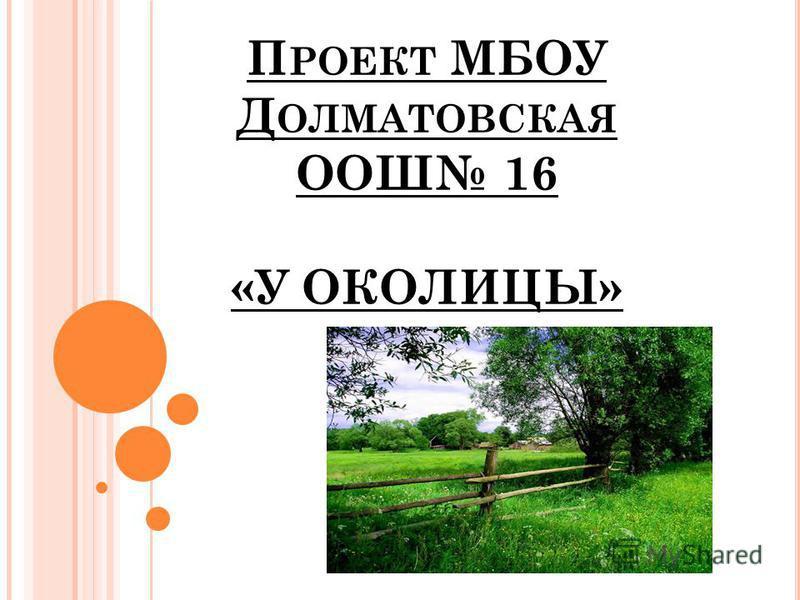 П РОЕКТ МБОУ Д ОЛМАТОВСКАЯ ООШ 16 «У ОКОЛИЦЫ»