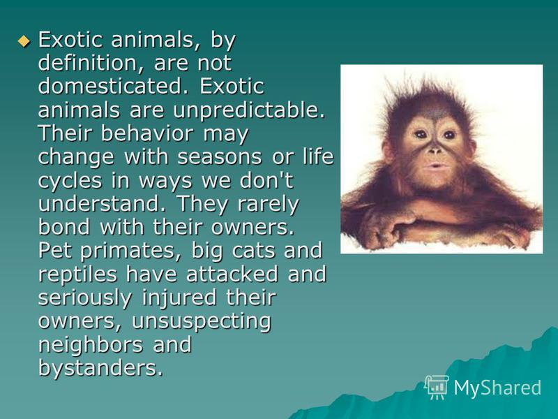 Exotic animals, by definition, are not domesticated. Exotic animals are unpredictable. Their behavior may change with seasons or life cycles in ways we don't understand. They rarely bond with their owners. Pet primates, big cats and reptiles have att