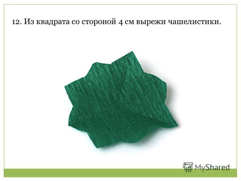 12. Из квадрата со стороной 4 см вырежи чашелистики.