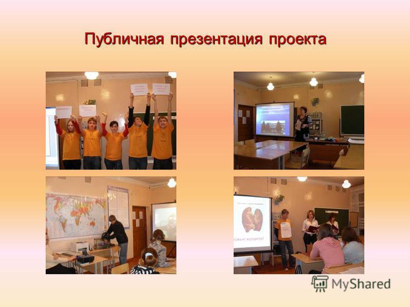 Публичная презентация проекта