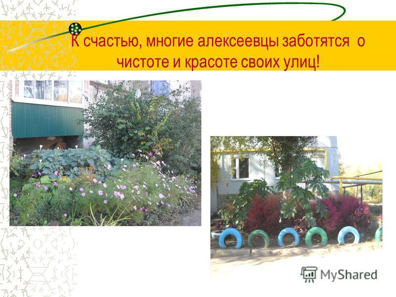 К счастью, многие алексеевцы заботятся о чистоте и красоте своих улиц!