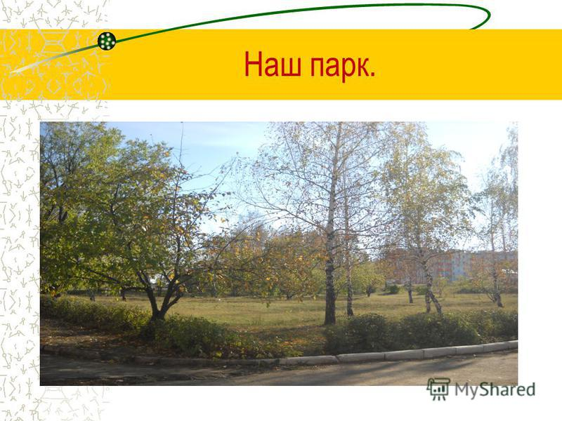 Наш парк.