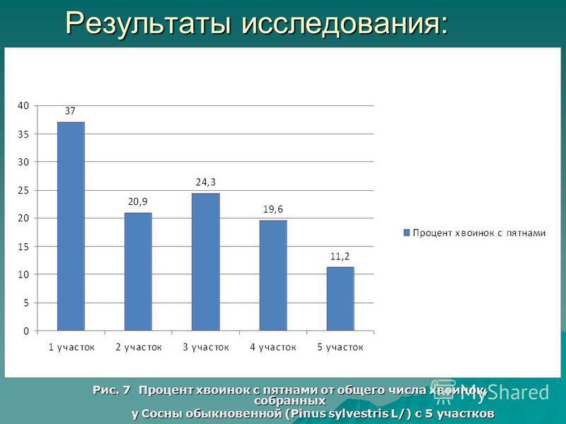 Результаты исследования: Рис. 7 Процент хвоинок с пятнами от общего числа хвоинок, собранных у Сосны обыкновенной (Pinus sylvestris L/) с 5 участков у Сосны обыкновенной (Pinus sylvestris L/) с 5 участков
