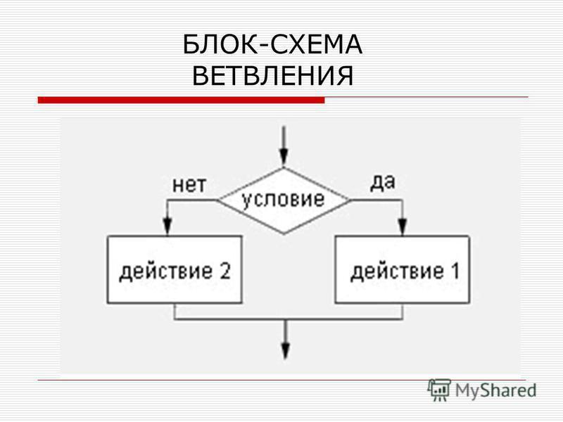 БЛОК-СХЕМА ВЕТВЛЕНИЯ