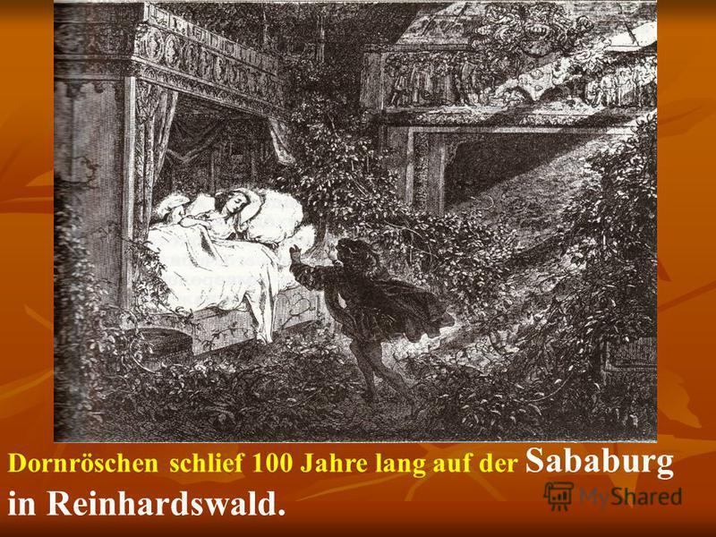 Dornröschen schlief 100 Jahre lang auf der Sababurg in Reinhardswald.
