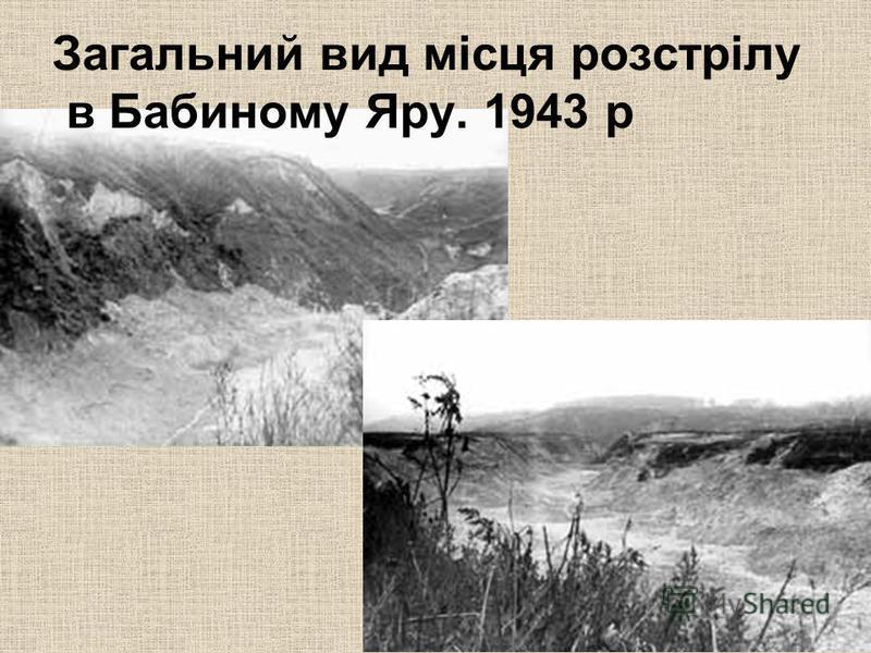 Загальний вид місця розстрілу в Бабиному Яру. 1943 р