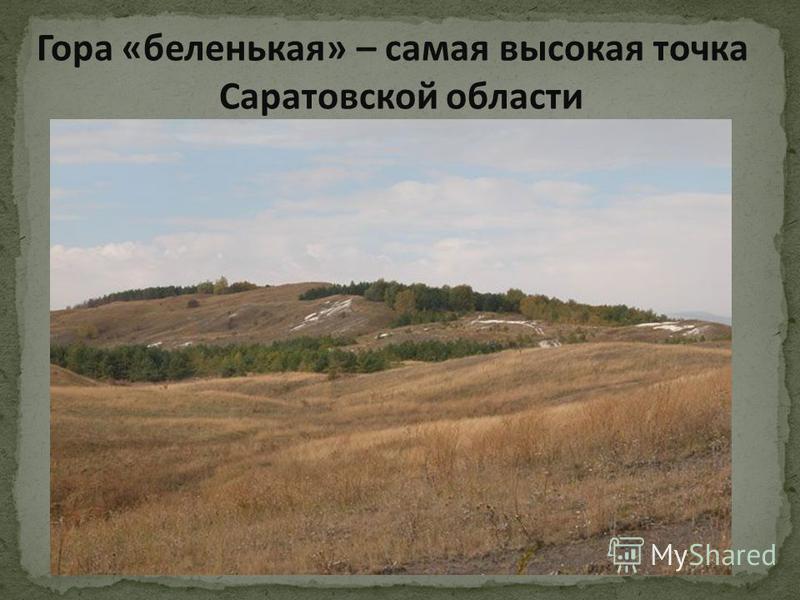 Гора «беленькая» – самая высокая точка Саратовской области