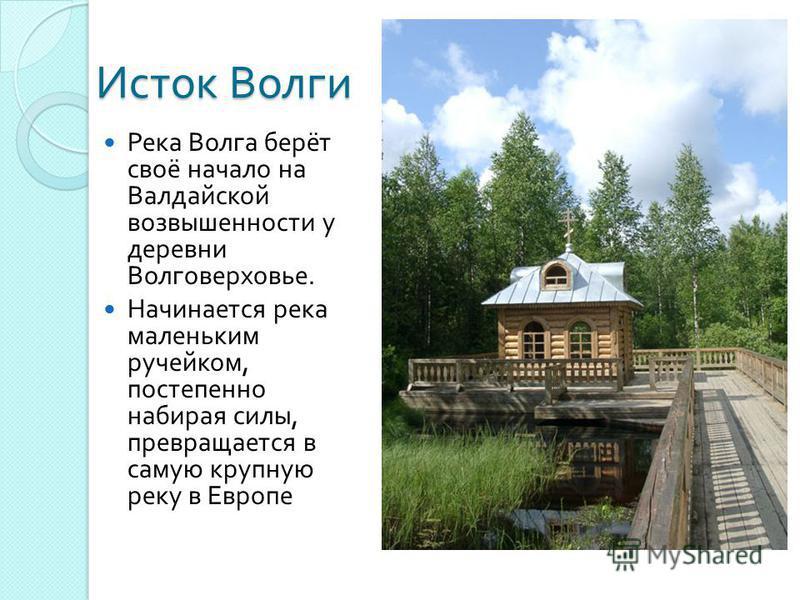 Исток Волги Река Волга берёт своё начало на Валдайской возвышенности у деревни Волговерховье. Начинается река маленьким ручейком, постепенно набирая силы, превращается в самую крупную реку в Европе