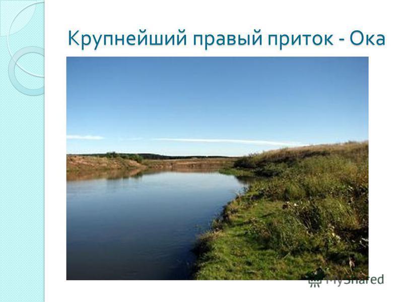 Крупнейший правый приток - Ока