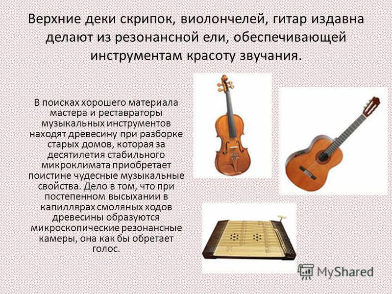 Верхние деки скрипок, виолончелей, гитар издавна делают из резонансной ели, обеспечивающей инструментам красоту звучания. В поисках хорошего материала мастера и реставраторы музыкальных инструментов находят древесину при разборке старых домов, котора