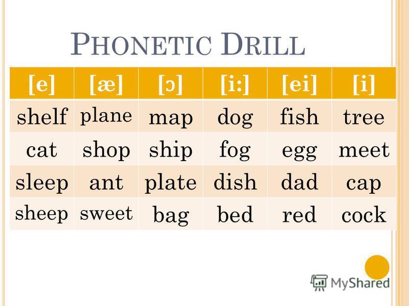 P HONETIC D RILL [e][æ][æ] [ɔ][ɔ] [i:][ei][i] shelf plane mapdogfishtree catshopshipfogeggmeet sleepantplatedishdadcap sheepsweet bagbedredcock