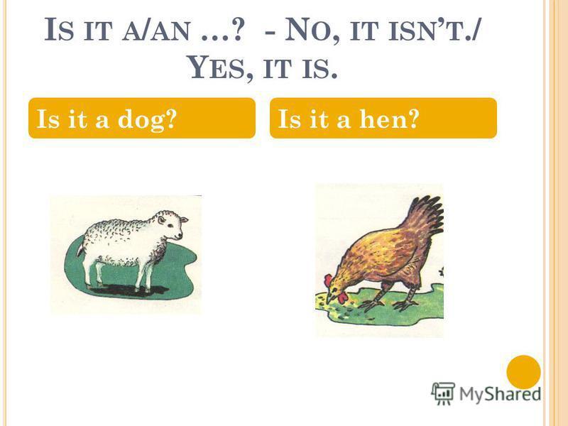 I S IT A / AN …? - N O, IT ISN T./ Y ES, IT IS. Is it a dog?Is it a hen?