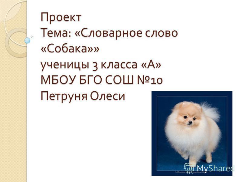 Проект Тема : « Словарное слово « Собака »» ученицы 3 класса « А » МБОУ БГО СОШ 10 Петруня Олеси
