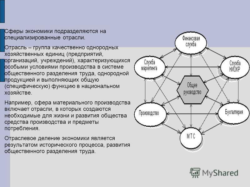 Сферы экономики подразделяются на специализированные отрасли. Отрасль – группа качественно однородных хозяйственных единиц (предприятий, организаций, учреждений), характеризующихся особыми условиями производства в системе общественного разделения тру