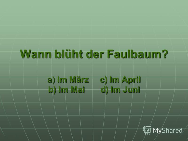 Wann blüht der Faulbaum? a) Im März c) Im April b) Im Mai d) Im Juni