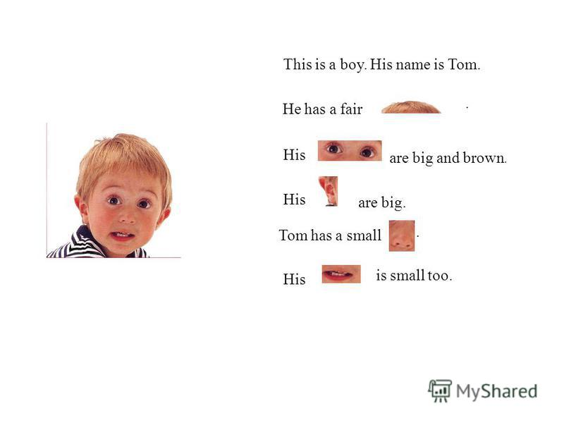 This is a boy. His name is Tom. His Tom has a small His is small too. He has a fair. are big and brown. are big..