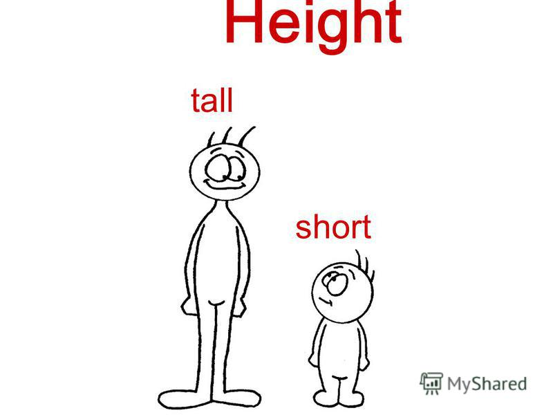 tall short Height