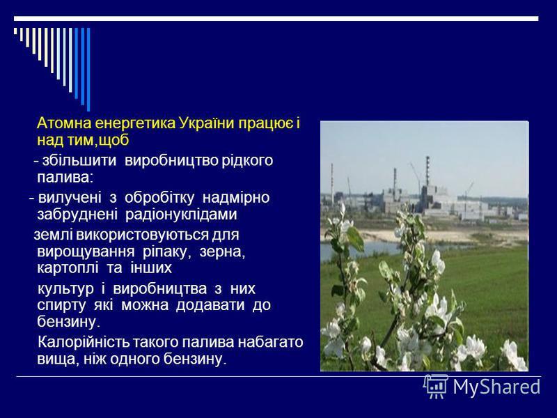 Атомна енергетика України працює і над тим,щоб - збільшити виробництво рідкого палива: - вилучені з обробітку надмірно забруднені радіонуклідами землі використовуються для вирощування ріпаку, зерна, картоплі та інших культур і виробництва з них спирт
