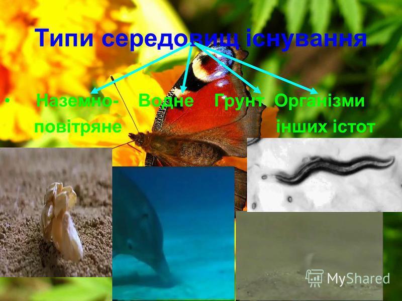 Типи середовищ існування Наземно- Водне Грунт Організми повітряне інших істот