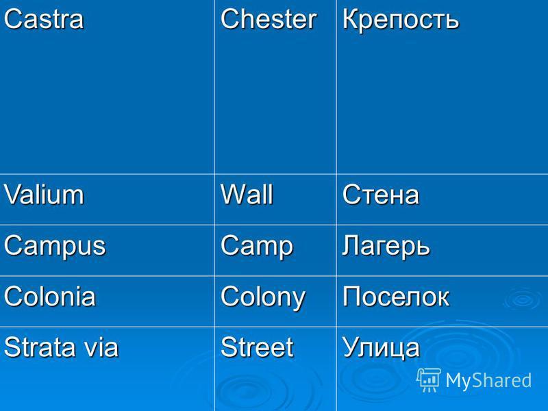 CastraChester Крепость ValiumWall Стена CampusCamp Лагерь ColoniaColony Поселок Strata via Street Улица