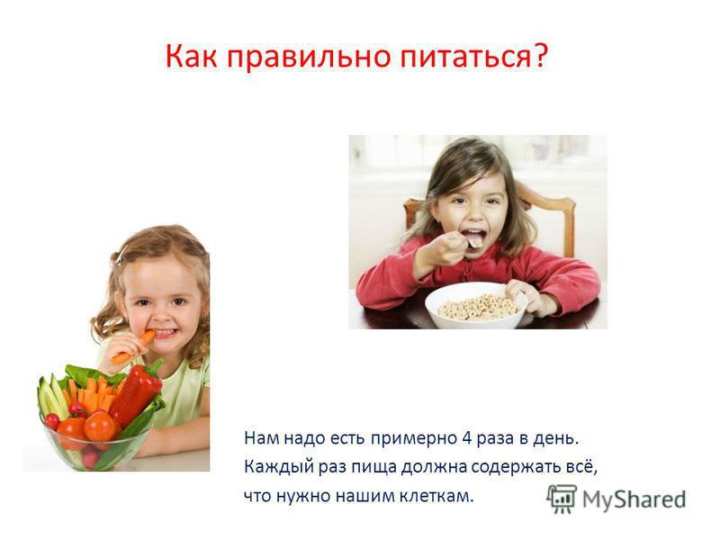 Как правильно питаться? Нам надо есть примерно 4 раза в день. Каждый раз пища должна содержать всё, что нужно нашим клеткам.