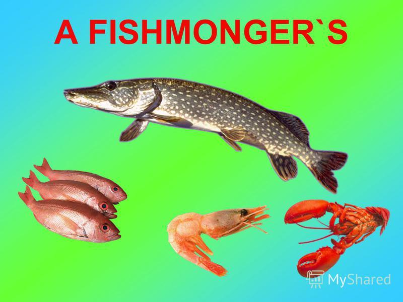 A FISHMONGER`S