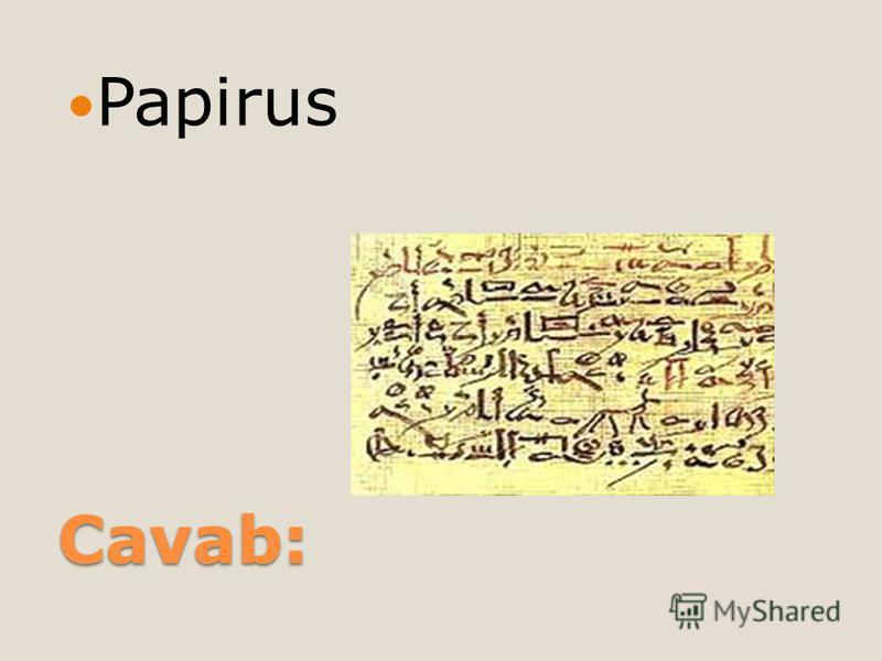 Cavab: Papirus