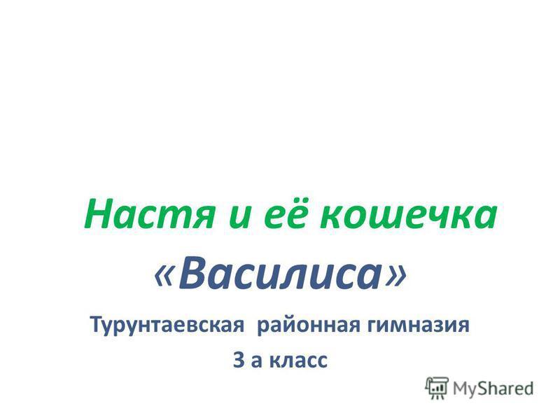 Настя и её кошечка «Василиса» Турунтаевская районная гимназия 3 а класс