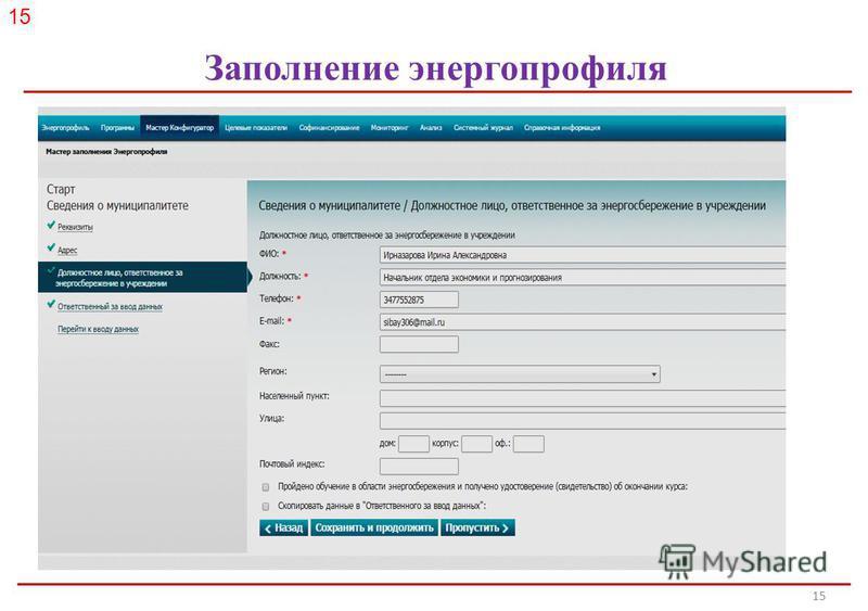 Российское энергетическое агентство 15 Заполнение энергопрофиля 15