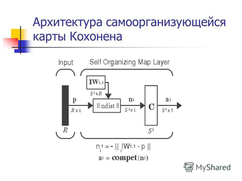 Архитектура самоорганизующейся карты Кохонена