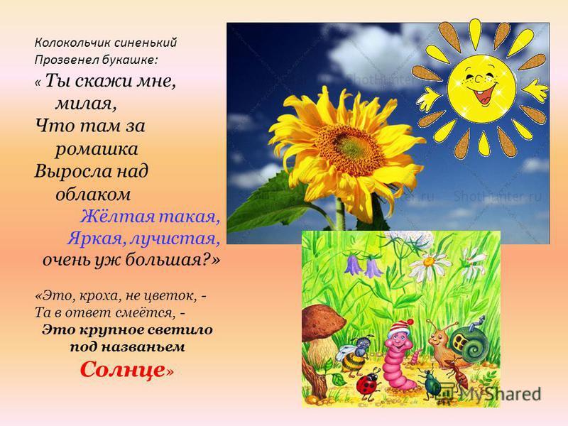 Колокольчик синенький Прозвенел букашке: « Ты скажи мне, милая, Что там за ромашка Выросла над облаком Жёлтая такая, Яркая, лучистая, очень уж большая?» «Это, кроха, не цветок, - Та в ответ смеётся, - Это крупное светило под названьем Солнце »