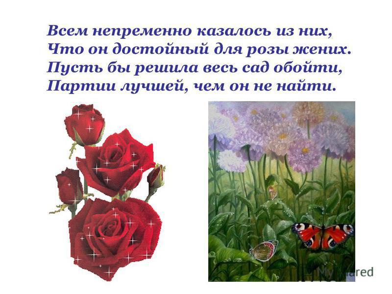 Всем непременно казалось из них, Что он достойный для розы жених. Пусть бы решила весь сад обойти, Партии лучшей, чем он не найти.
