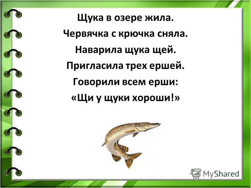 Щука в озере жила. Червячка с крючка сняла. Наварила щука щей. Пригласила трех ершей. Говорили всем ерши: «Щи у щуки хороши!»