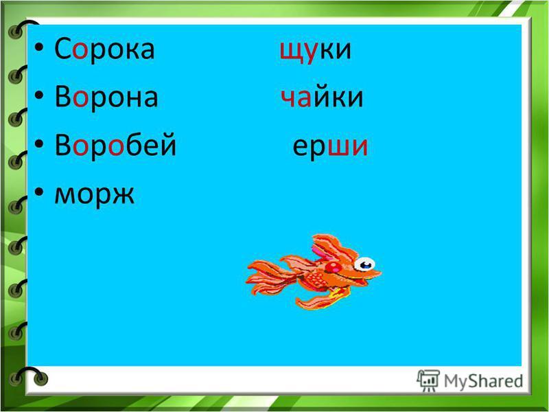 Сорока щуки Ворона чаики Воробей ерши морж