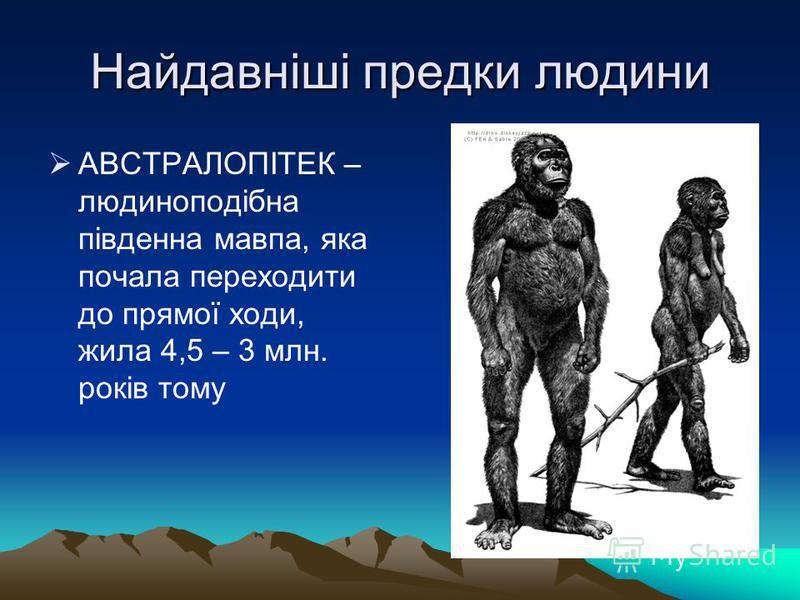 Найдавніші предки людини АВСТРАЛОПІТЕК – людиноподібна південна мавпа, яка почала переходити до прямої ходи, жила 4,5 – 3 млн. років тому
