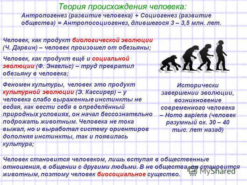 Теория происхождения человека: Антропогенез (развитие человека) + Социогенез (развитие общества) = Антропосоциогенез, длившегося 3 – 3,5 млн. лет. Человек, как продукт биологической эволюции (Ч. Дарвин) – человек произошел от обезьяны; Человек, как п