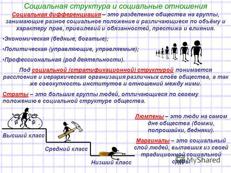 Социальная структура и социальные отношения Социальная дифференциация – это разделение общества на группы, занимающие разное социальное положение и различающиеся по объёму и характеру прав, привилегий и обязанностей, престижа и влияния. Экономическая