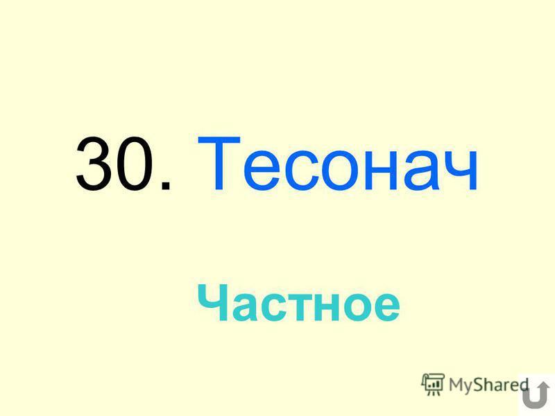 30. Тесонач Частное