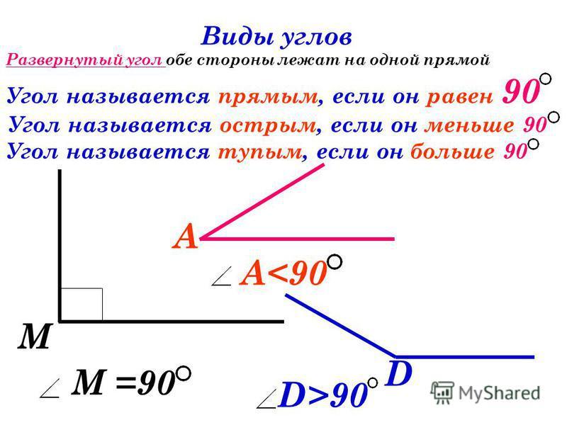 А Развернутый угол обе стороны лежат на одной прямой А - развернутый А =180 Виды углов