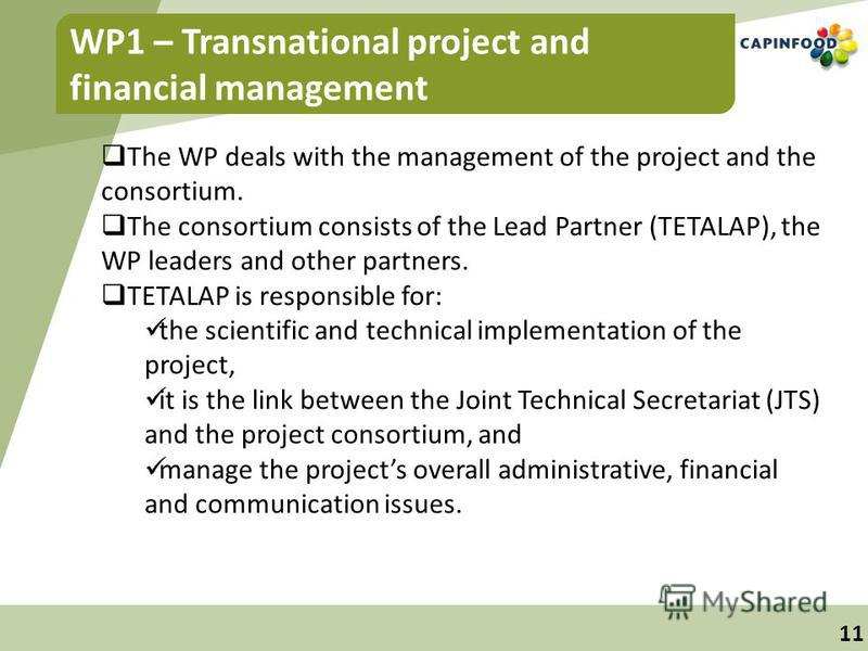 11 WP1 – Transnational project and financial management The WP deals with the management of the project and the consortium. The consortium consists of the Lead Partner (TETALAP), the WP leaders and other partners. TETALAP is responsible for: the scie