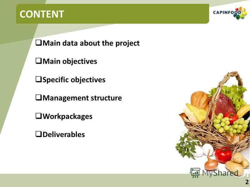 2 CONTENT Main data about the project Main objectives Specific objectives Management structure Workpackages Deliverables